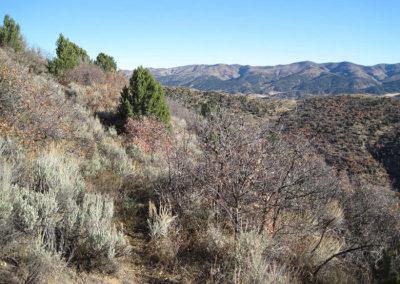 Elk Country Villa Ranch