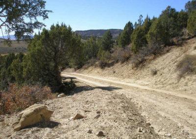 Hunting road